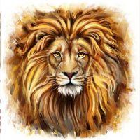 """Набор алмазной мозаики """"Взгляд льва"""" (DM-051)"""
