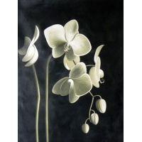 """Набор алмазной мозаики """"Цвет орхидеи"""" (DM-115)"""