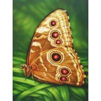 """Набор алмазной мозаики """"Бабочка Монарх"""" (DM-176)"""