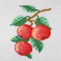 """Канва с рисунком для вышивки крестом """"Яблоки"""" (СК1-07)"""