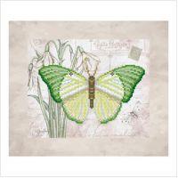 """Схема для вышивки бисером """"Бабочка"""" (Т-0799)"""